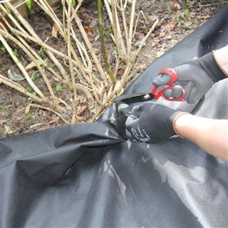 Weedtex Weed Control Fabric 50GSM 1m x 50m