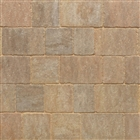 Trident Paviors 240mm x 160mm x 50mm Forest Blend