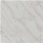 Wetwall Shower Panel 2420mm x 1200mm Carrara Marble